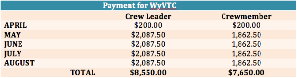 payment-for-wyvtc