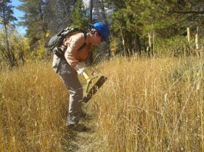 BIG EVENT, WCC, and Outdoor Program Work on Trails North of Vedauwoo